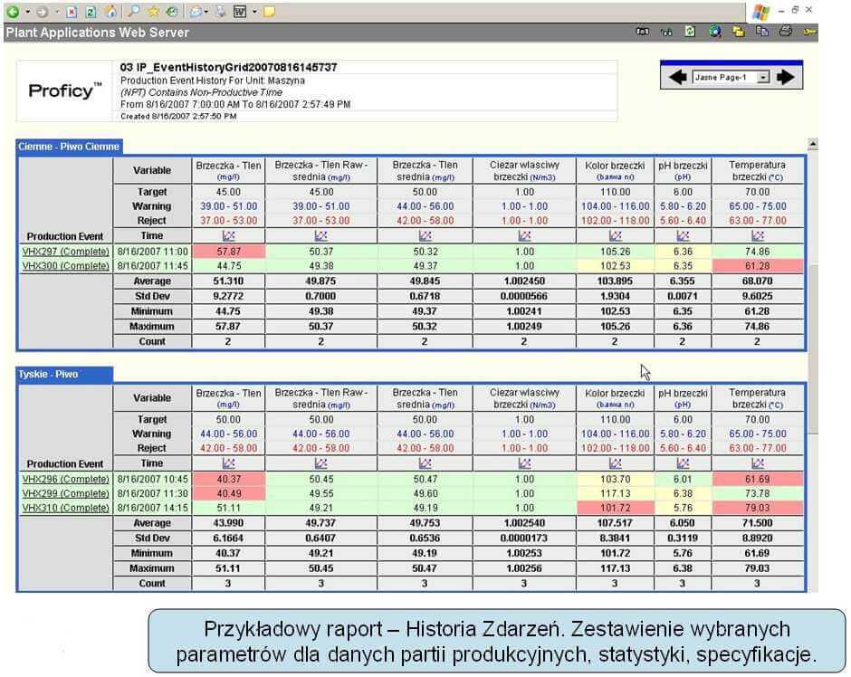 Monit_efektyw_vix.com_.pl_pkt10