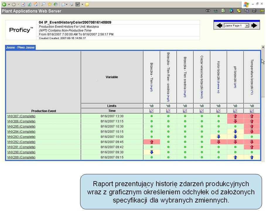 Monit_efektyw_vix.com_.pl_pkt11